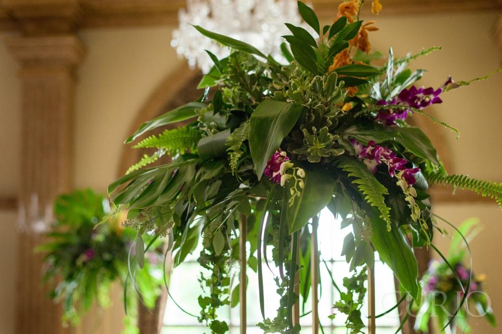 Jungle Theme Wedding Dcors Of Aman Muneets Wedding Curio Studios
